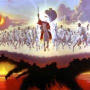 paarden vanuit de hemel