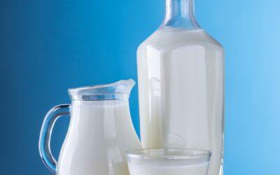 Melk, gezond of ongezond?